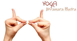 Yoga-Mudra-Bhramara-Allergies